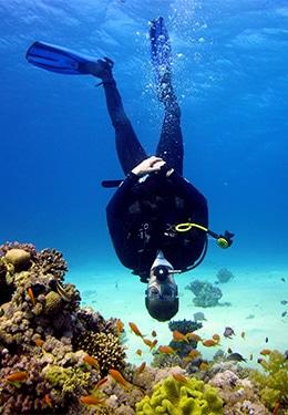 James scuba-diving (upside down)